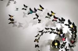 Декор стен. Украшение интерьера бабочками