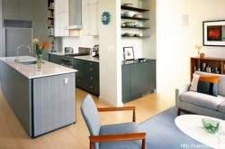 Дизайн кухни студии совмещенной с гостиной фото